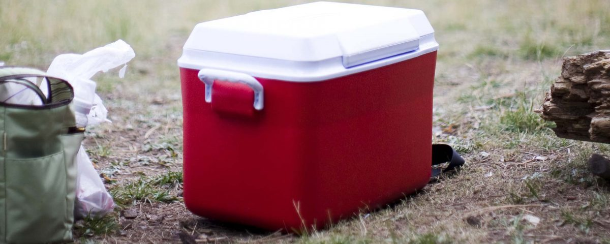 A cooler packed with dry ice for effective food storage.